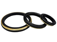 Replacement Elastomer Seal