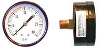 "Pressure & Vacuum Gauges - 2 1/2"" Face x 1/4"" Back-Steel Case Center Back Mount"