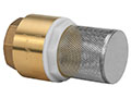 2 Inch (in) Size Brass Spring Loaded Check Valve with Filter