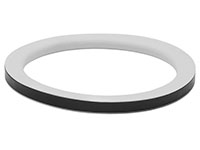 Replacement Gaskets (300 TF)