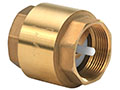 2 Inch (in) Size Brass Spring Loaded Check Valve